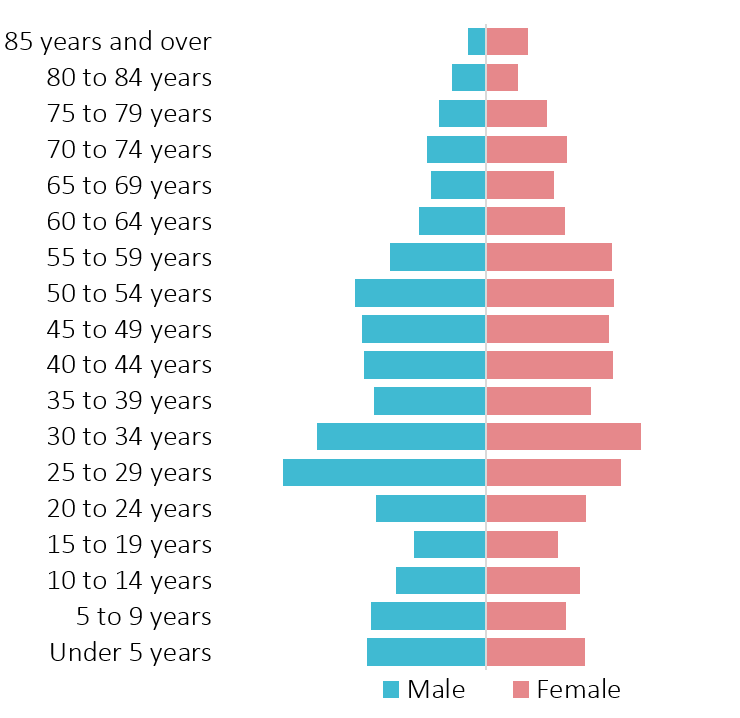 image of Age Pyramid