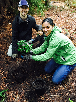 Image of volunteers planting trees.