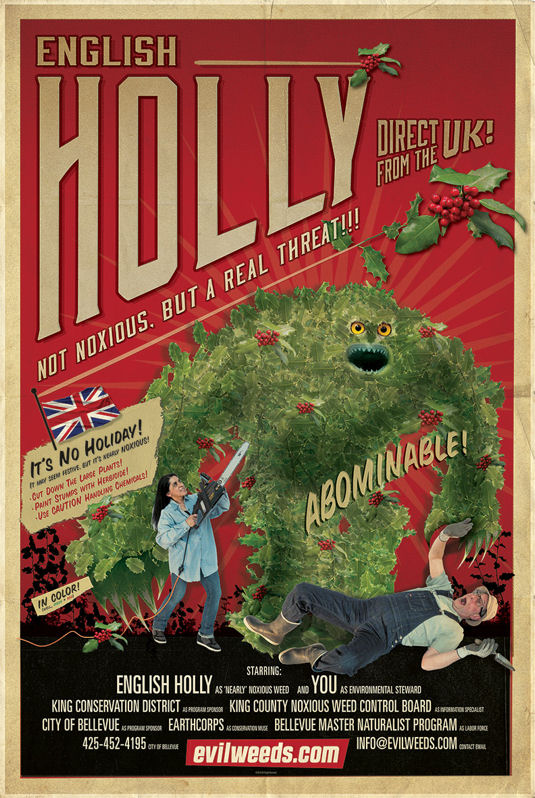 image of English Holly Poster