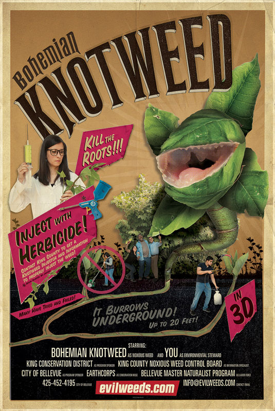 image of Knotweed Poster