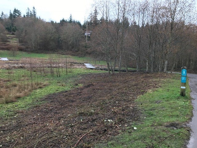 Image of Lewis Creek Park buffer enhancement project before