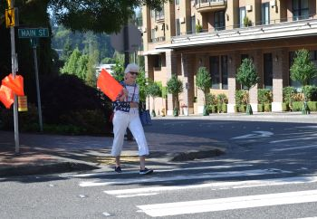 image of pedestrian carrying flag in crosswalk