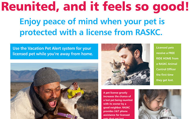 Reunited-Pet-Licensing-Web.jpg