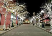 Northeast Sixth Street is ablaze with holiday lights by Bellevue Way.
