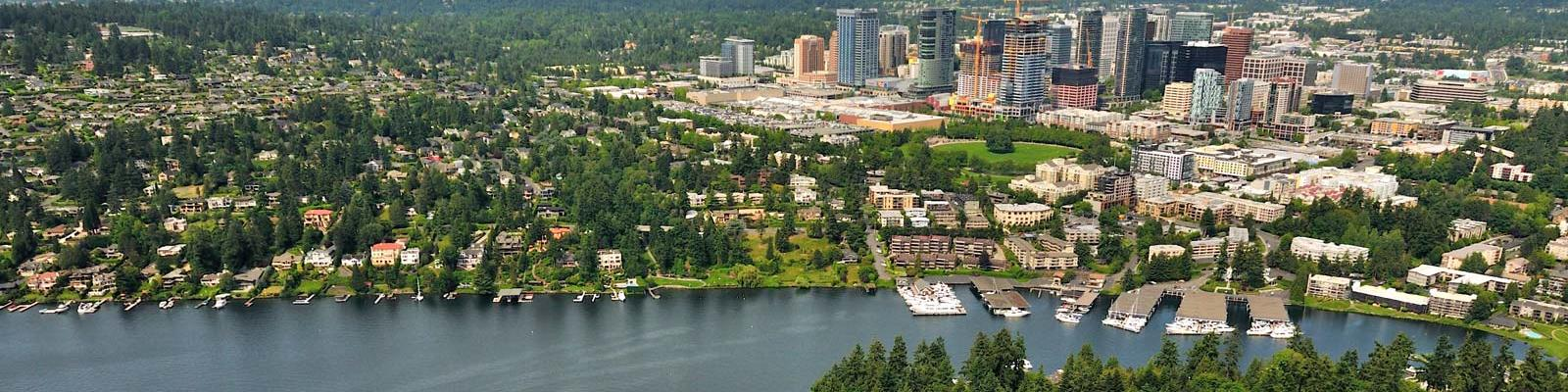 bellevue header