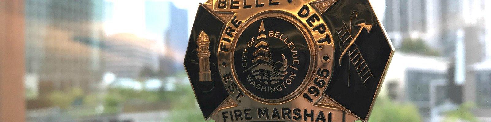 Public Information Sheets | City of Bellevue