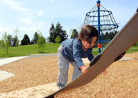 A boy plays at Surrey Downs Park.