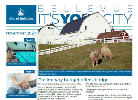 Sheep roam at Kelsey Creek Farm on the cover of the November 2020 It's Your City newsletter.
