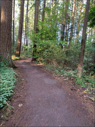 Photo of Robinswood Park trail