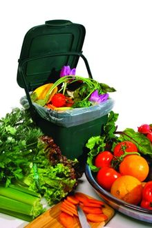 Recycle food scraps to prevent sewage backups.